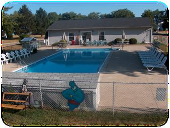 20' x 50' Swimming Pool